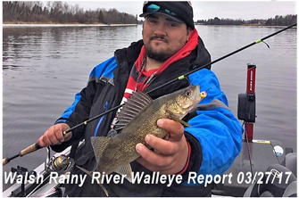 image of Andy Walsh with rainy river walleye