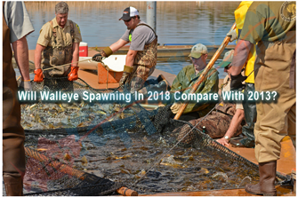 image links to article about walleye spawing conditions