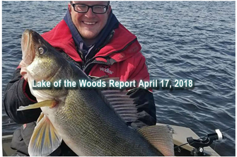 link to lake of the woods report