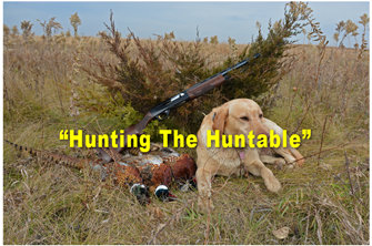 image links to hunting article