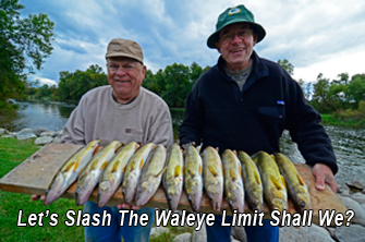image links to article about walleye limits