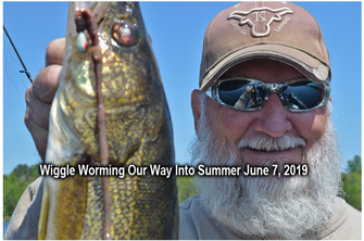 image links to article about walleye fishing with wiggle worms
