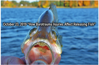 image links to article about barotrauma