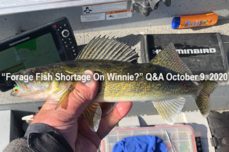 image links to Winnie Walleye Report