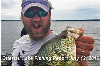 image links to Ottertail Lake Fishing Report